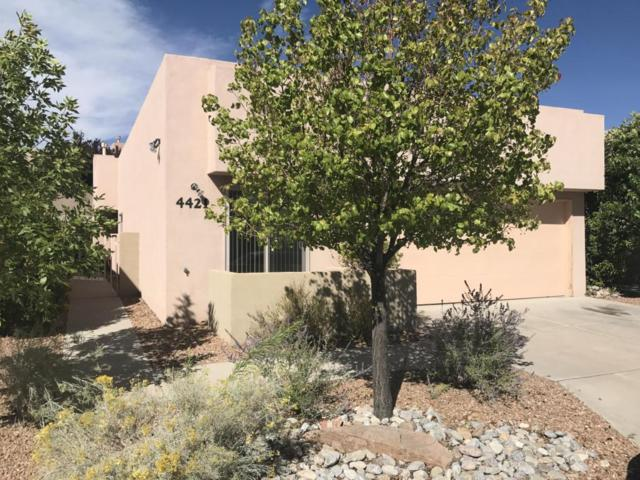 4421 Desert Chicory Court SE, Rio Rancho, NM 87124 (MLS #902167) :: Campbell & Campbell Real Estate Services