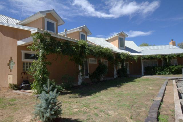 808 West Meadowlark Road, Corrales, NM 87048 (MLS #902175) :: Campbell & Campbell Real Estate Services