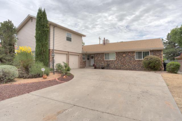 8604 Harwood Avenue NE, Albuquerque, NM 87111 (MLS #902282) :: Your Casa Team