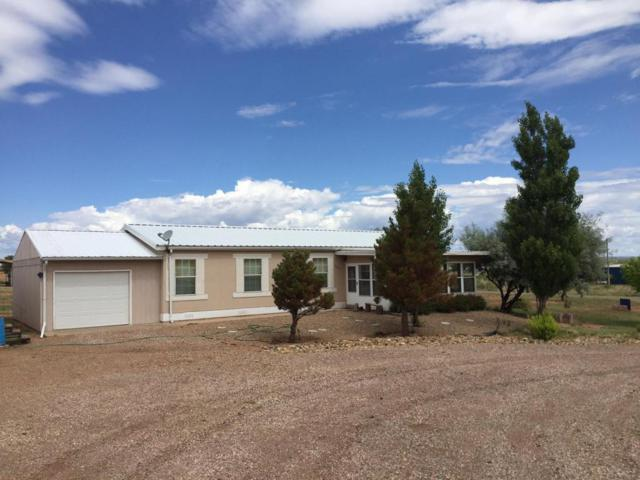 Big Mesa, Conchas Dam, NM 88416 (MLS #902308) :: Campbell & Campbell Real Estate Services