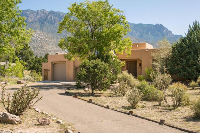 751 Tramway Lane NE, Albuquerque, NM 87122 (MLS #902310) :: Your Casa Team
