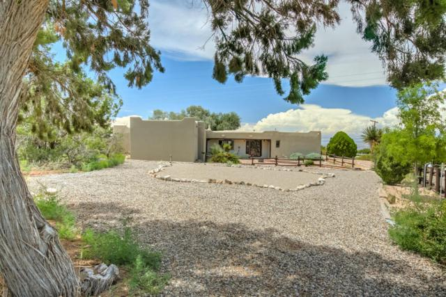 11 Quail Meadow Road, Placitas, NM 87043 (MLS #902331) :: Will Beecher at Keller Williams Realty