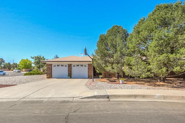 9601 San Gabriel Road NE, Albuquerque, NM 87111 (MLS #902387) :: Your Casa Team