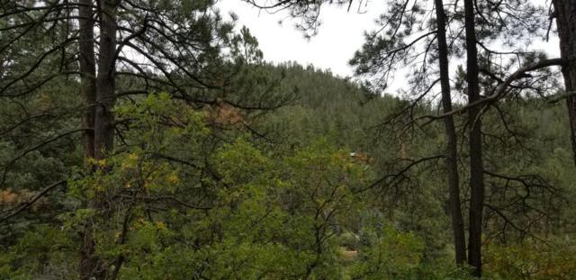Highway 126, Jemez Springs, NM 87025 (MLS #902488) :: The Bigelow Team / Realty One of New Mexico