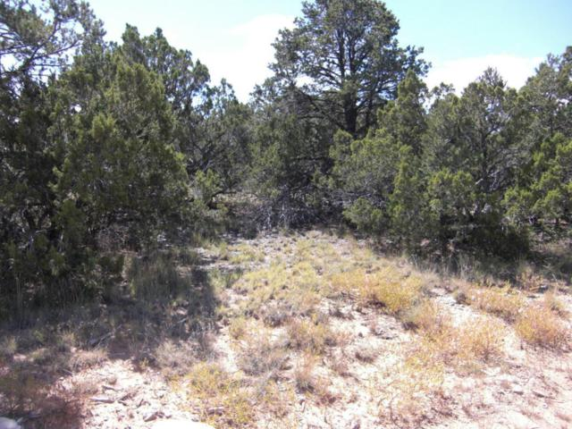 257 Gutierrez Canyon Road, Cedar Crest, NM 87008 (MLS #902633) :: Campbell & Campbell Real Estate Services