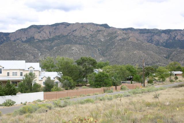 Carmel Avenue NE, Albuquerque, NM 87122 (MLS #902683) :: Campbell & Campbell Real Estate Services