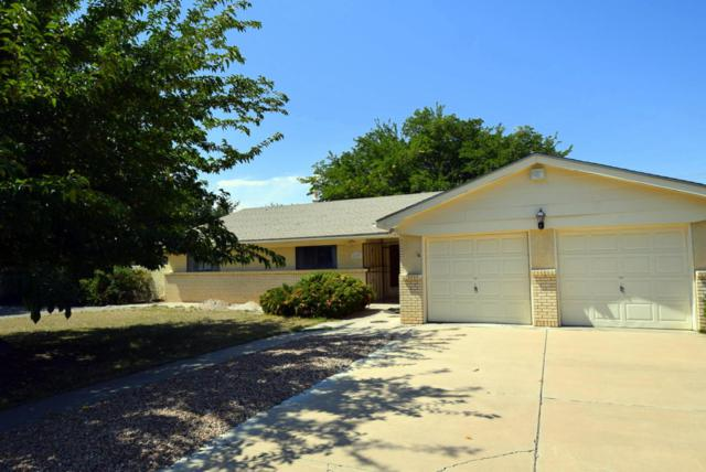 4109 Dietz Court NW, Los Ranchos, NM 87107 (MLS #902705) :: Rickert Property Group
