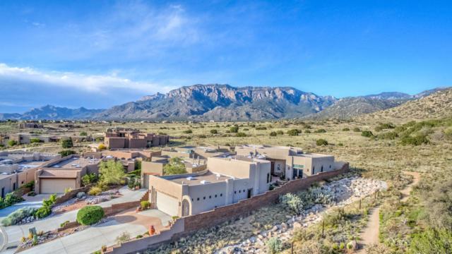 5259 Foothills Trail NE, Albuquerque, NM 87111 (MLS #902726) :: Your Casa Team