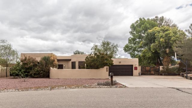 309 Quebrada Lane NE, Albuquerque, NM 87113 (MLS #903047) :: Your Casa Team