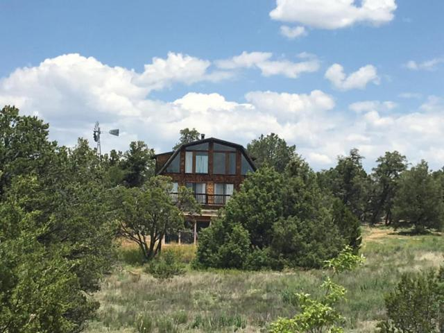 86 Bodean Road, Ramah, NM 87321 (MLS #903061) :: Campbell & Campbell Real Estate Services