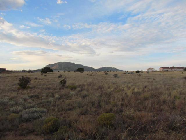 21 Northland Court, Edgewood, NM 87015 (MLS #903129) :: The Bigelow Team / Realty One of New Mexico