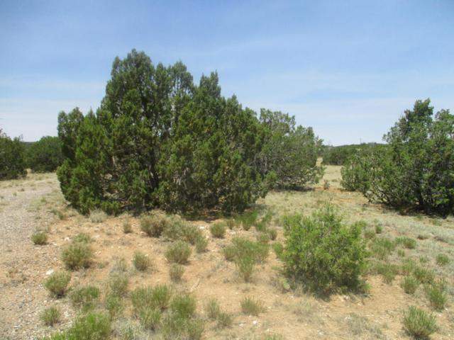 Double D, Moriarty, NM 87035 (MLS #903178) :: Campbell & Campbell Real Estate Services