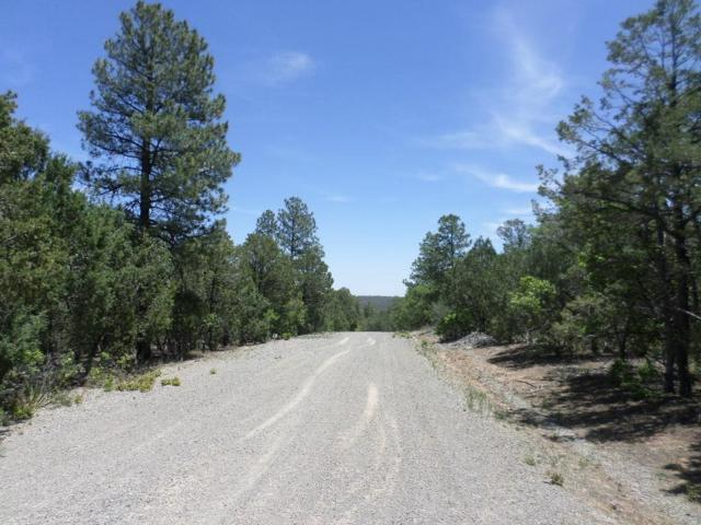 16 Secret Pines Court, Tijeras, NM 87059 (MLS #903230) :: Your Casa Team