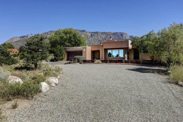 1134 Marigold Drive NE, Albuquerque, NM 87122 (MLS #903290) :: Your Casa Team
