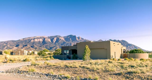 3 Sundagger Loop, Placitas, NM 87043 (MLS #903485) :: Rickert Property Group