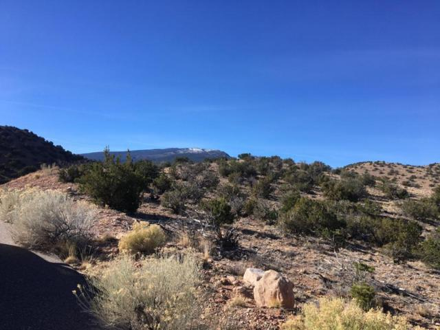Lot 1 & 2 Diego Estates, Placitas, NM 87043 (MLS #903539) :: Rickert Property Group