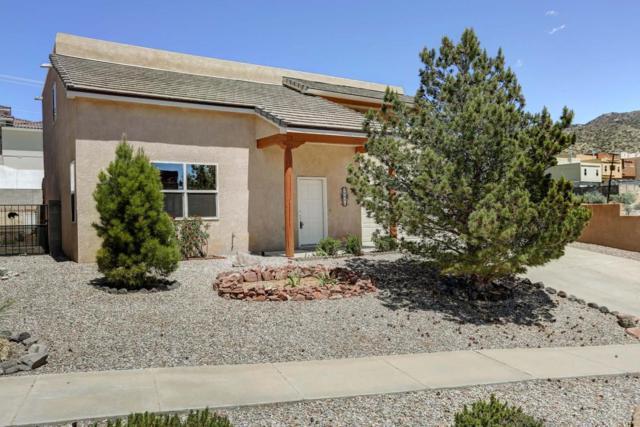 13411 Rachel Road SE, Albuquerque, NM 87123 (MLS #903561) :: Your Casa Team