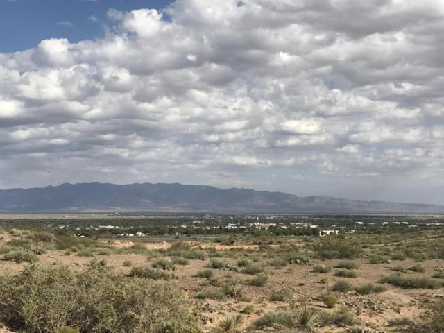 20 Erica Lane, Belen, NM 87002 (MLS #903565) :: Campbell & Campbell Real Estate Services