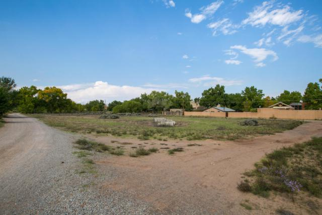 Price Lane Lot A-1-B, Corrales, NM 87048 (MLS #903654) :: Campbell & Campbell Real Estate Services
