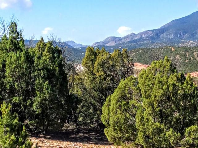 16 Puntilla Drive, Tijeras, NM 87059 (MLS #903688) :: Your Casa Team