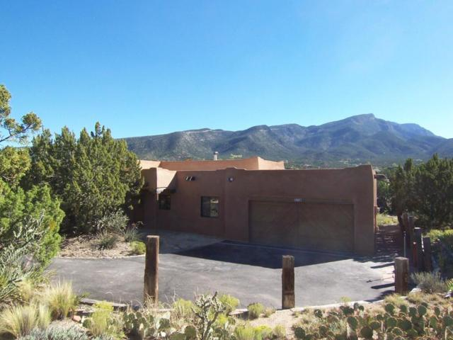 1 Black Bear Point, Placitas, NM 87043 (MLS #903797) :: Rickert Property Group