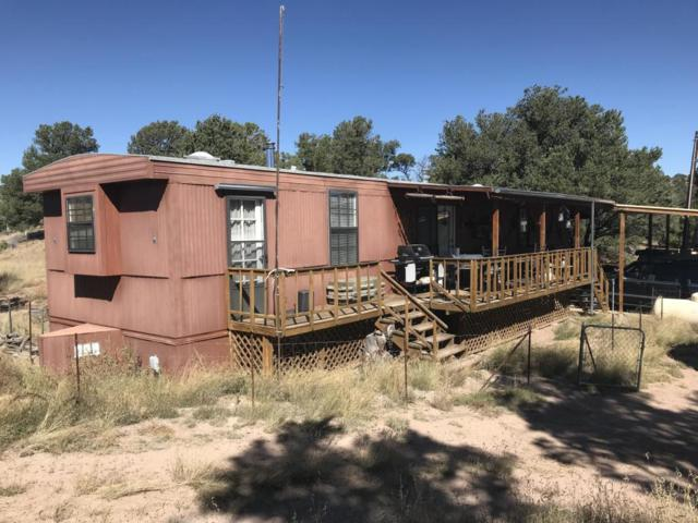 37 & 51 Crosby Canyon Ln, Datil, NM 87821 (MLS #903846) :: Campbell & Campbell Real Estate Services