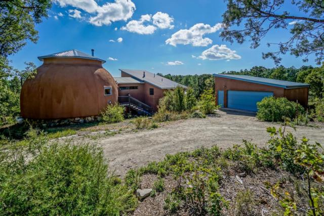 15 Little Dipper Road, Tijeras, NM 87059 (MLS #903869) :: Campbell & Campbell Real Estate Services