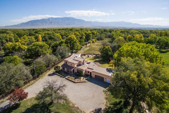 300 Morningstar Lane, Corrales, NM 87048 (MLS #903915) :: Campbell & Campbell Real Estate Services