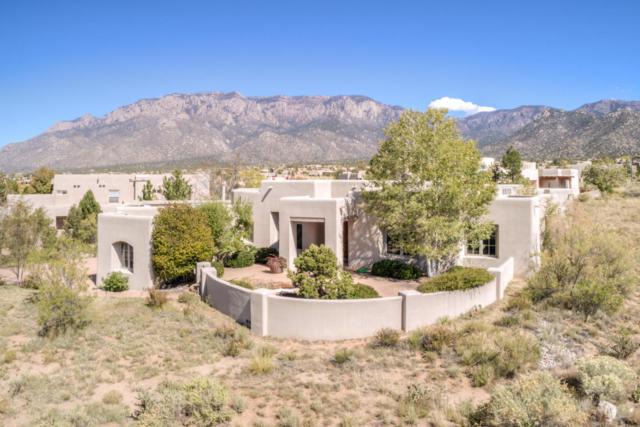6108 Copper Rose Street NE, Albuquerque, NM 87111 (MLS #903947) :: Rickert Property Group