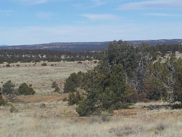 Slurry Road, Pie Town, NM 87827 (MLS #903968) :: Campbell & Campbell Real Estate Services