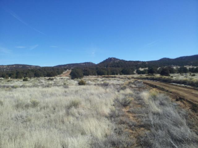 Webb Ranch Road, Pie Town, NM 87827 (MLS #903972) :: Campbell & Campbell Real Estate Services