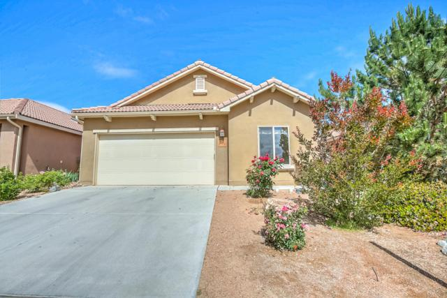 919 Desert Willow Court, Bernalillo, NM 87004 (MLS #904012) :: Campbell & Campbell Real Estate Services