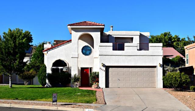 7553 Richmond Hill Road NW, Albuquerque, NM 87120 (MLS #904063) :: Your Casa Team
