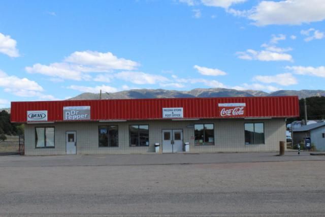 864 Nm State Hwy 96, Regina, NM 87046 (MLS #904073) :: Campbell & Campbell Real Estate Services
