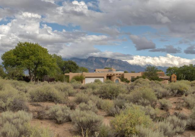 696 Mission Valley Road, Corrales, NM 87048 (MLS #904083) :: Rickert Property Group
