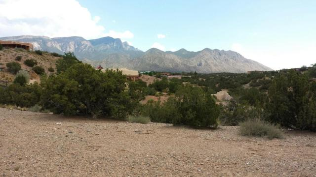Pueblo Road, Placitas, NM 87043 (MLS #904107) :: Rickert Property Group