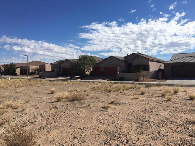 1141 Palo Alto Court, Bernalillo, NM 87004 (MLS #904136) :: Campbell & Campbell Real Estate Services