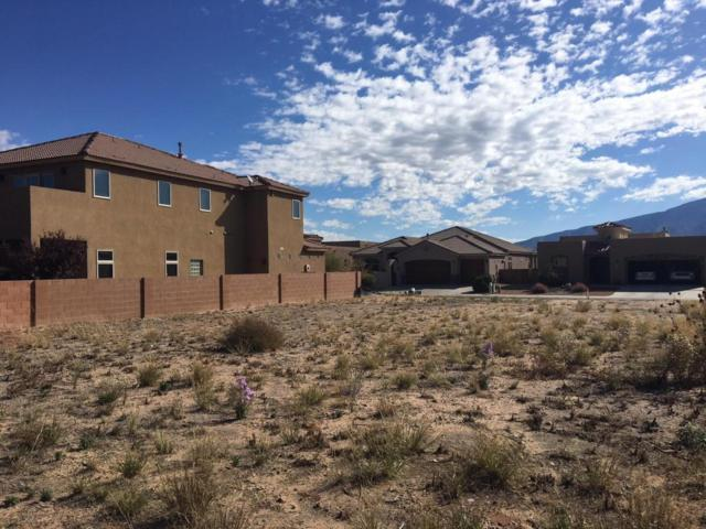 1111 Palo Alto Court, Bernalillo, NM 87004 (MLS #904139) :: Campbell & Campbell Real Estate Services