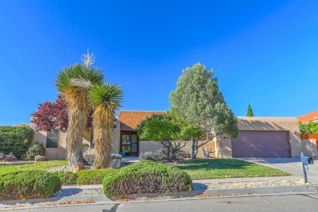 9101 Camino Cometa NE, Albuquerque, NM 87111 (MLS #904171) :: Will Beecher at Keller Williams Realty