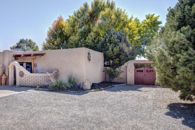 258 Olguin Road, Corrales, NM 87048 (MLS #904172) :: Rickert Property Group