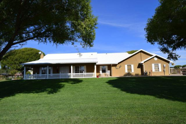 81 Bloom N Shine Road, Los Lunas, NM 87031 (MLS #904199) :: Rickert Property Group