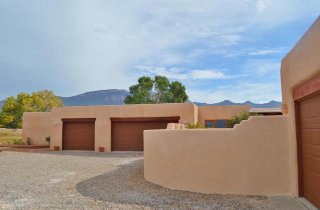 10 Tierra Madre Court, Placitas, NM 87043 (MLS #904281) :: Rickert Property Group
