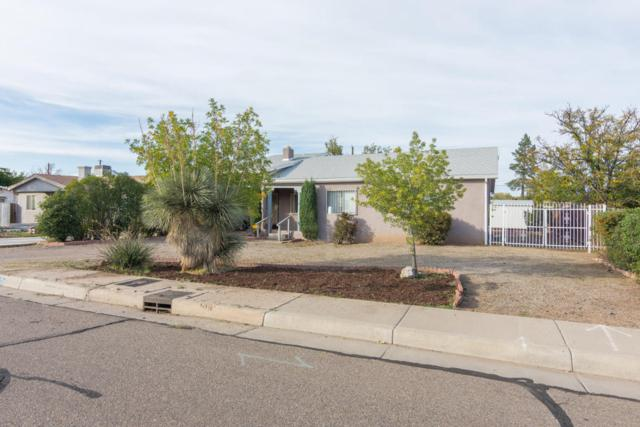 1005 Woodland Avenue NW, Albuquerque, NM 87107 (MLS #904291) :: Rickert Property Group