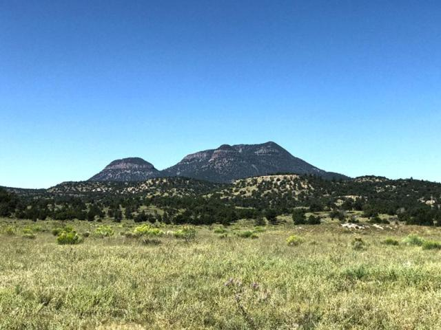 Greens Gap Road, Pie Town, NM 87827 (MLS #904298) :: Campbell & Campbell Real Estate Services