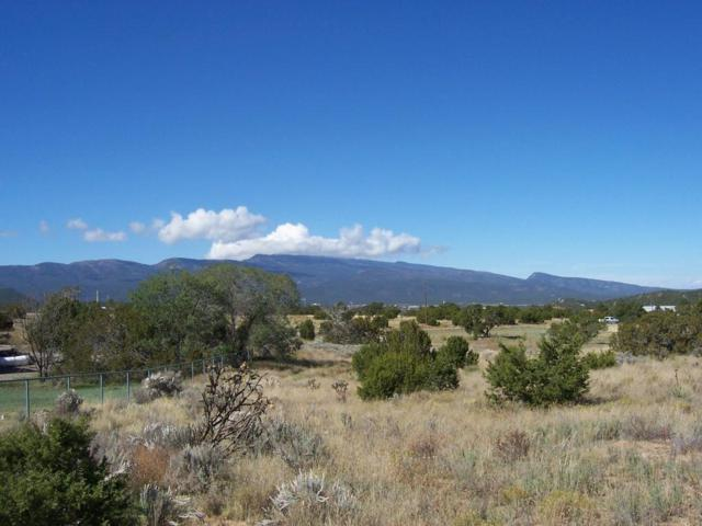 25 Kings Road, Sandia Park, NM 87047 (MLS #904308) :: Campbell & Campbell Real Estate Services