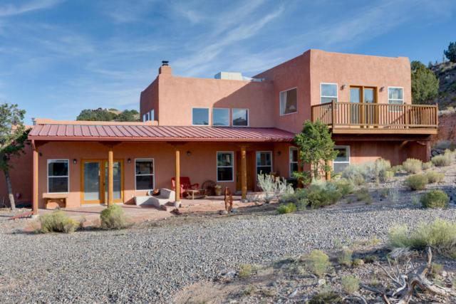 45 Tejon Canon Road, Placitas, NM 87043 (MLS #904378) :: Campbell & Campbell Real Estate Services