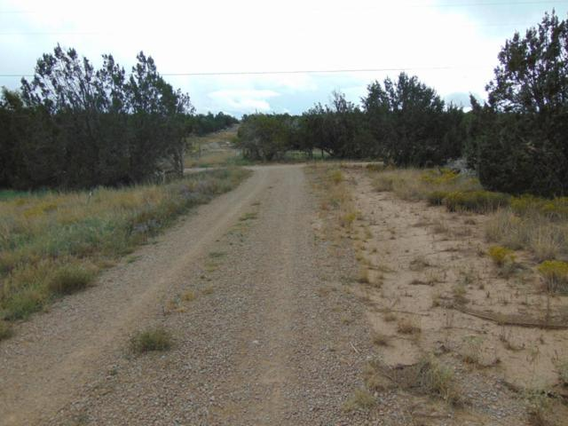 3549 Martinez Road, Edgewood, NM 87015 (MLS #904408) :: Campbell & Campbell Real Estate Services