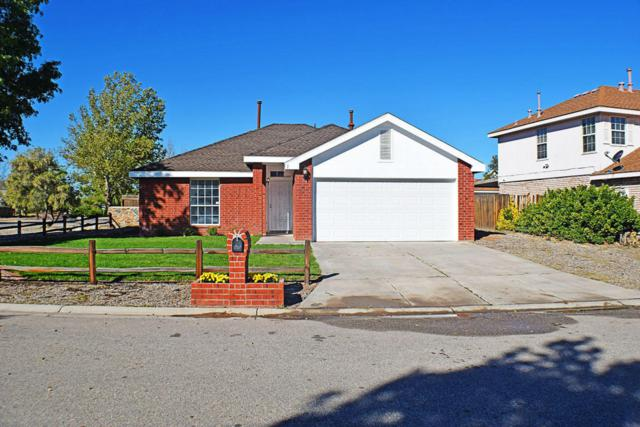 1 Buckbrush Place, Los Lunas, NM 87031 (MLS #904415) :: Campbell & Campbell Real Estate Services