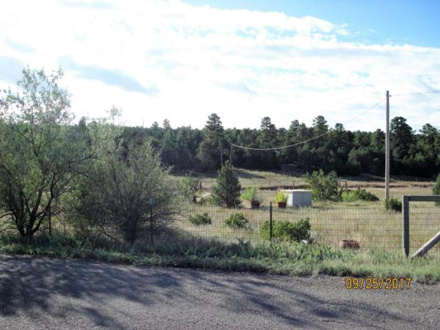 70 Holli Loop, Edgewood, NM 87015 (MLS #904454) :: Campbell & Campbell Real Estate Services