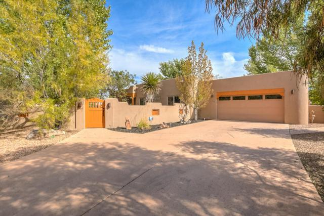 300 Plaza Muchomas, Bernalillo, NM 87004 (MLS #904516) :: Campbell & Campbell Real Estate Services